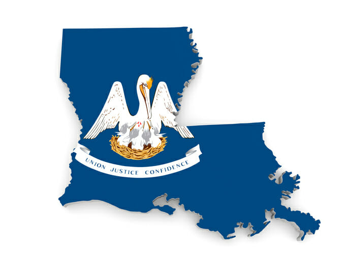 Louisiana with state bird