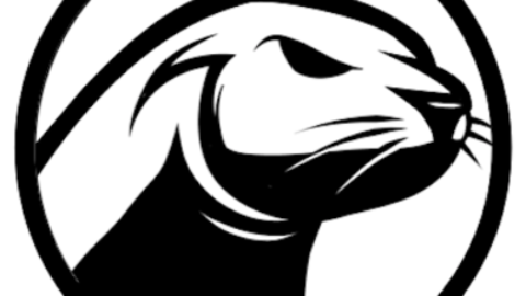 Seal Capital logo Building an international team in blockchain