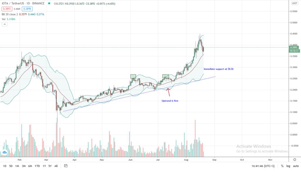 IOTA Price Daily Chart for Aug 20