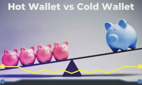 Cryptocurrency wallet- Hot and cold; which one suits you?
