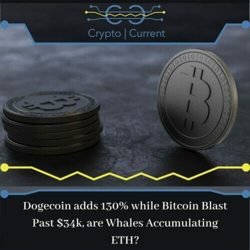 Dogecoin adds 130% while Bitcoin Blast Past $34k, are Whales Accumu