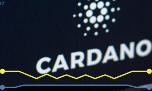 What is the Cardano Mary Protocol