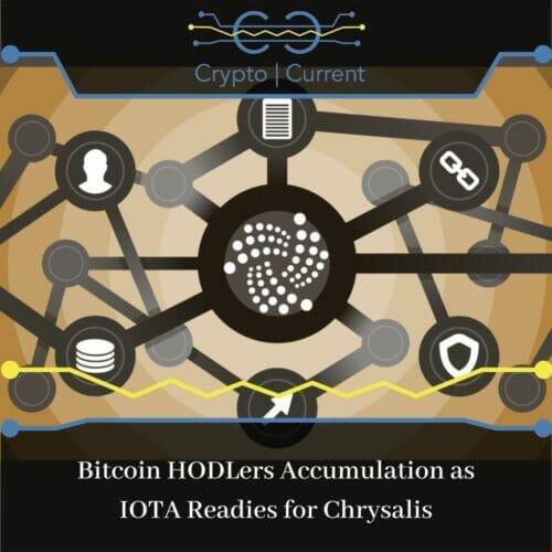 Bitcoin HODLers Accumulation as IOTA Readies for Chrysalis