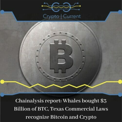 Chainalysis report Whales bought $3 Billion of BTC, Texas Commercial Laws recognize Bitcoin and Crypto