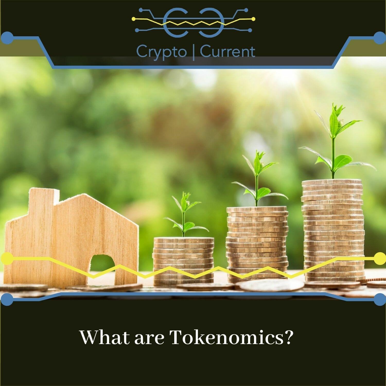 What are Tokenomics?