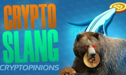 5 Crypto Slang You Need to Know